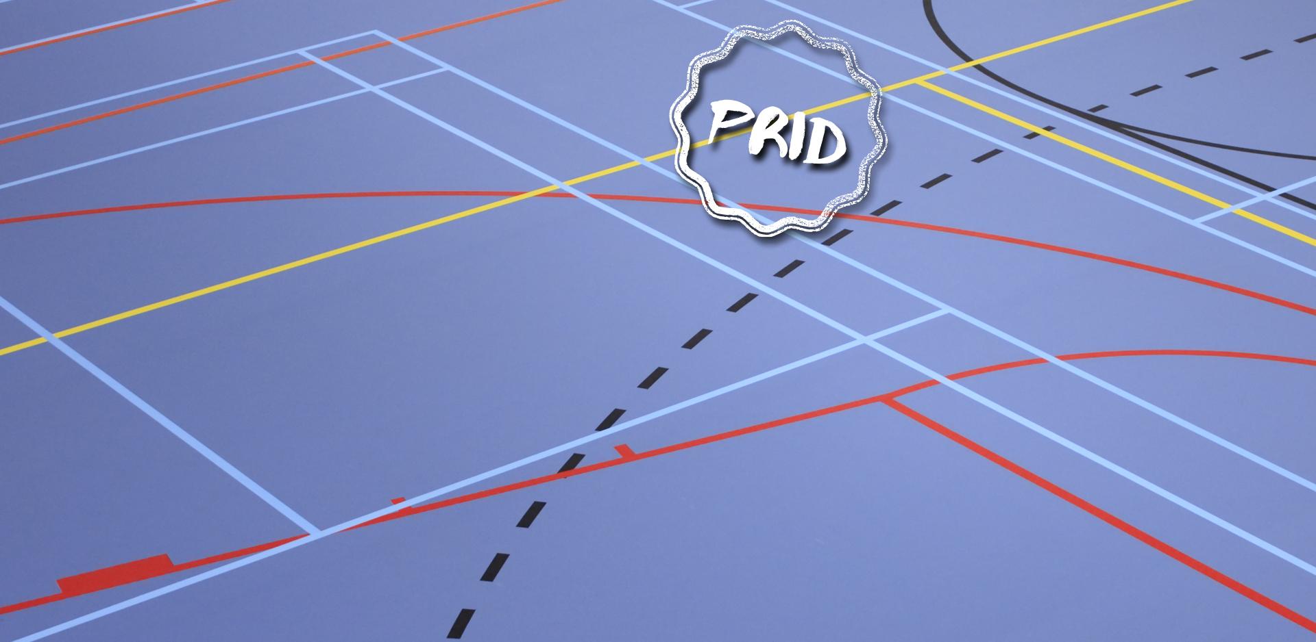 Imagem gráfica de um campo com várias linhas de campos desportivos sobrepostas e o logo do PRID