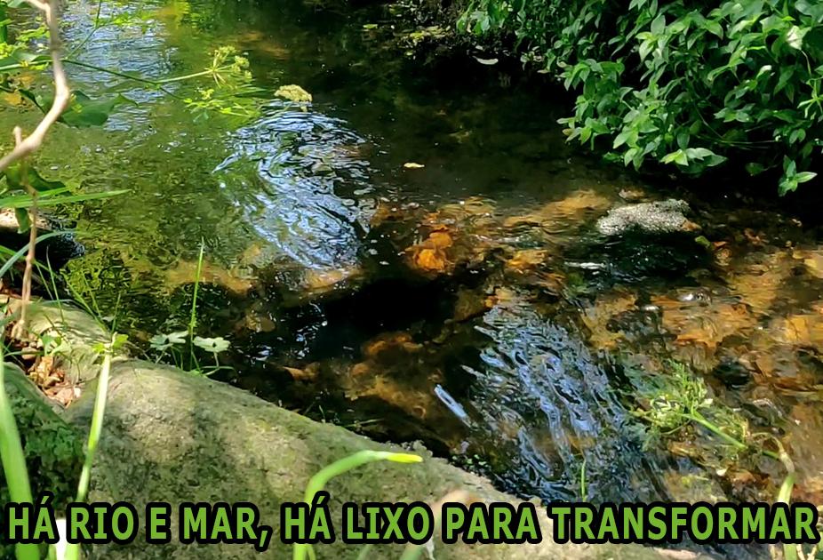 Riacho com água cristalina e vegetação verde nas margens