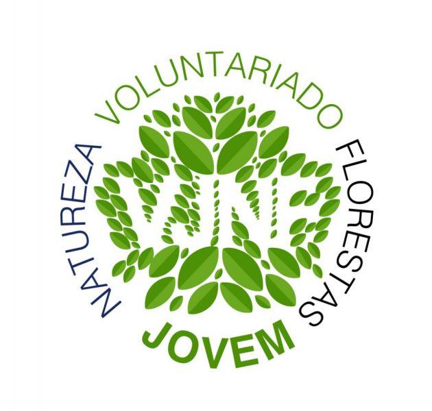 voluntariado-jovem-logo