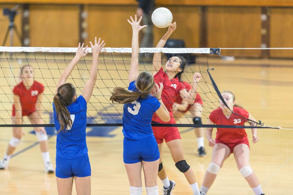 equipas femininas de voleibol a jogar