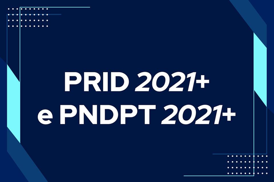 imagem gráfica com inscrição PRID 2021+ e PNDpT 2021+
