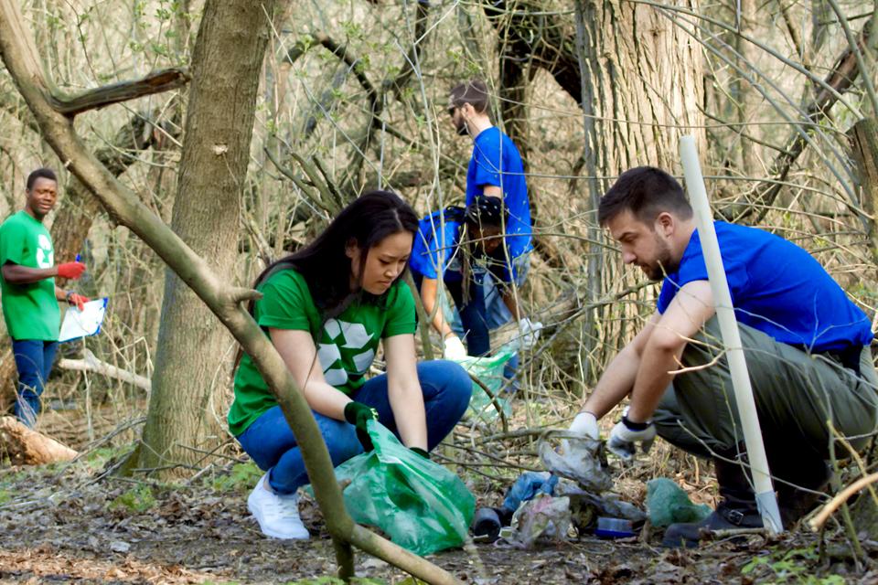 Conjunto de jovens a limpar uma floresta.