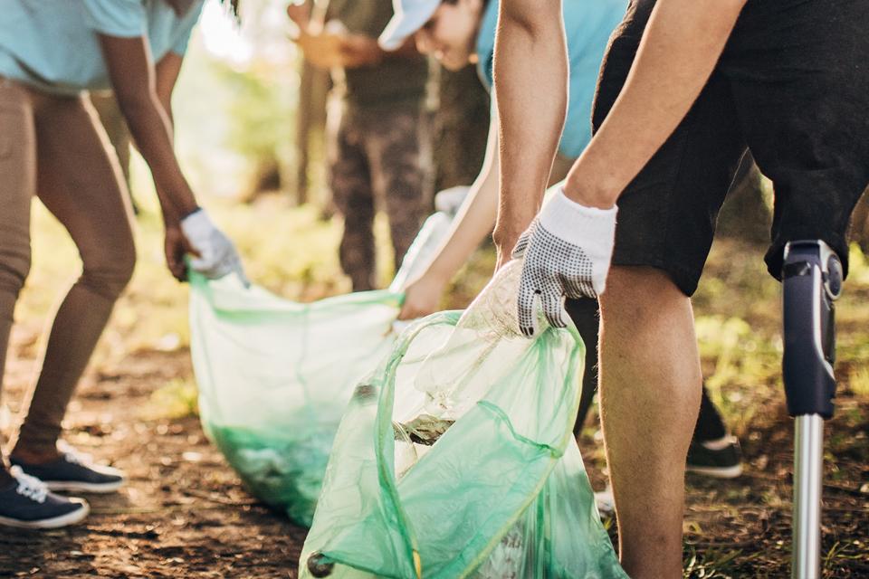 Imagens de jovens a limpar a floresta.
